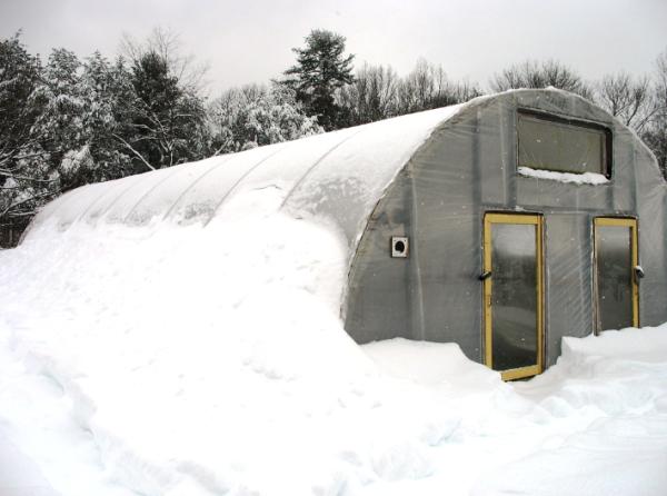 Фото теплицы зимней для круглогодичного урожая