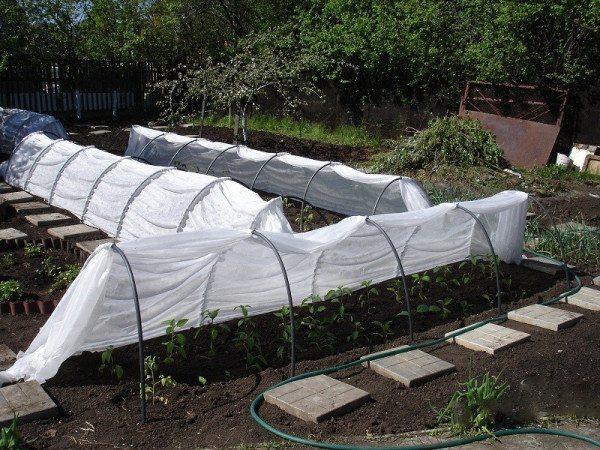 Готовая конструкция для выращивания овощей