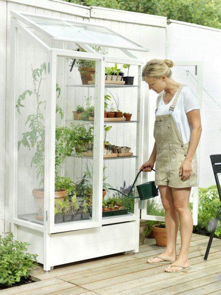 Интересная идея шкафа-парника для дома