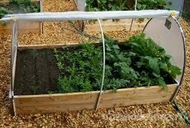 Миниатюрная теплица для выращивания рассады или зелени