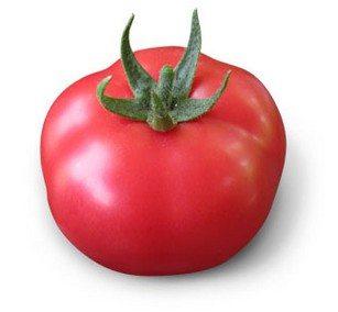 Плод сорта Геркулес