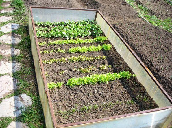 Сделать конструкцию для выращивания посадочного материала довольно просто