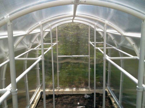 Удобная система подвязок: вертикальные стойки и поперечины для ящиков с рассадой.