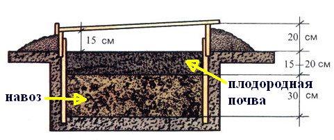 Устройство парника на биотопливе