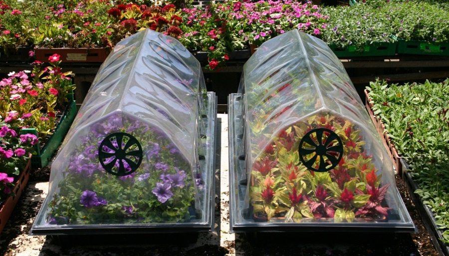 Садовые дорожки из пластиковых бутылок