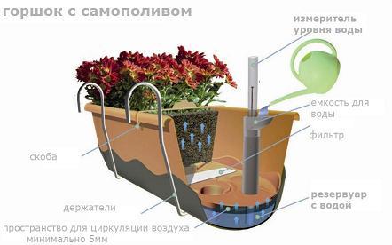 Системы самополива значительно упростят уход за растениями