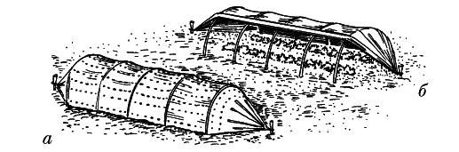 Тоннель для земляники